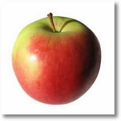 893214 apple i